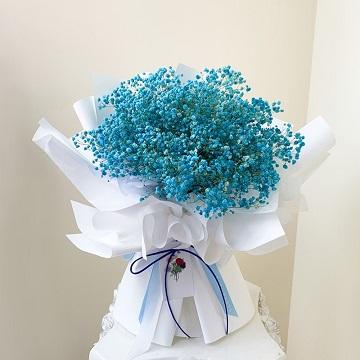 简单的幸福-蓝色满天星花束
